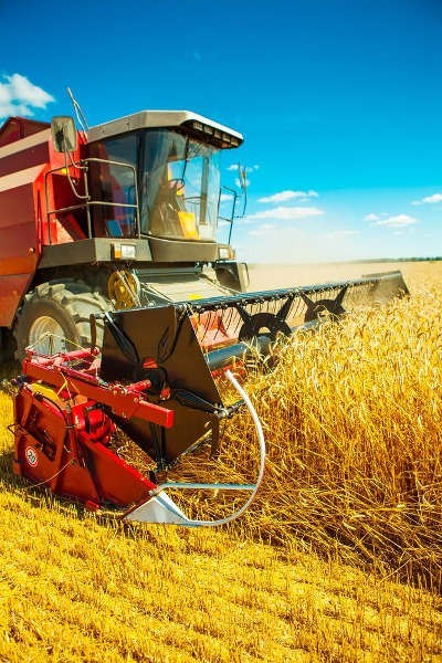 roboty-rolnicze